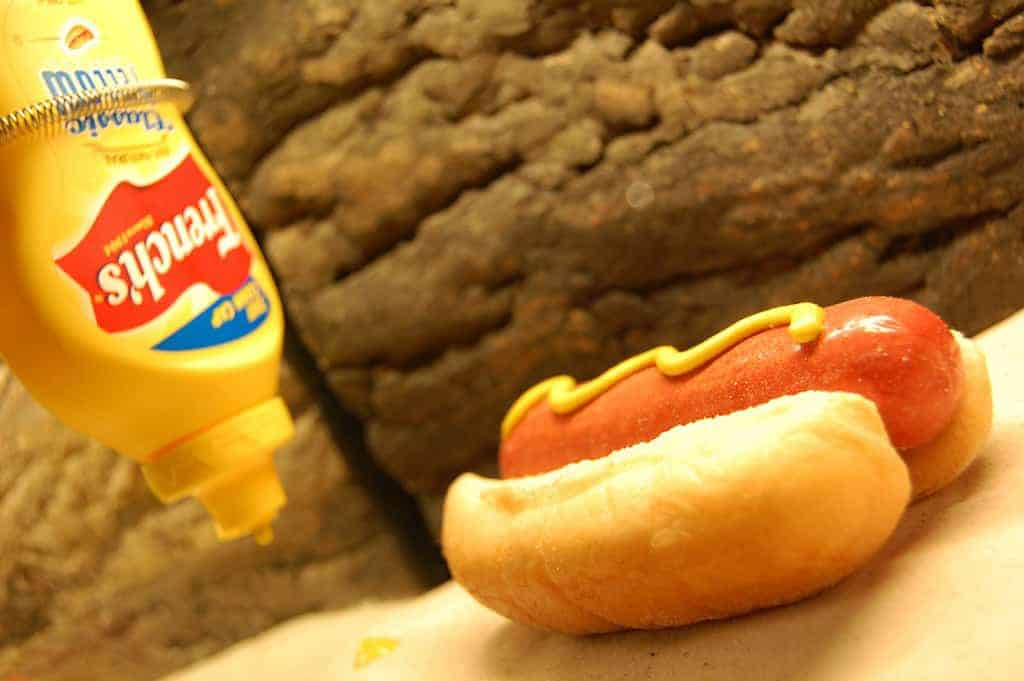 Father plans to 'Indianize' Fourth of July hot dogs again